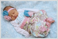 Personalized Baby Girl Layette Gown / Birds